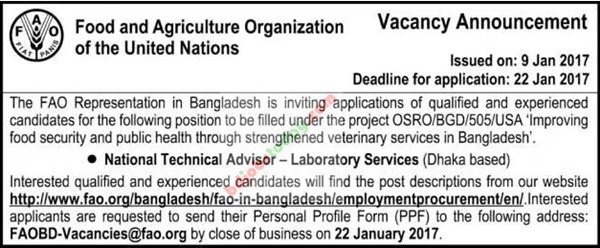 Food and Agriculture Organization -FAO jobs